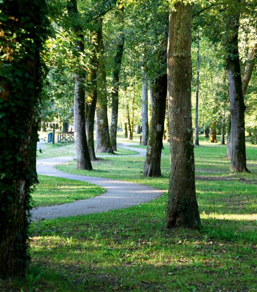 Bois de Boulogne autour du Domaine